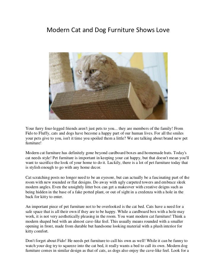 Modern Cat and Dog Furniture Shows Love<br />Your furry four-legged friends aren't just pets to you... they are members of...