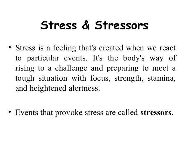 Essay About Stress