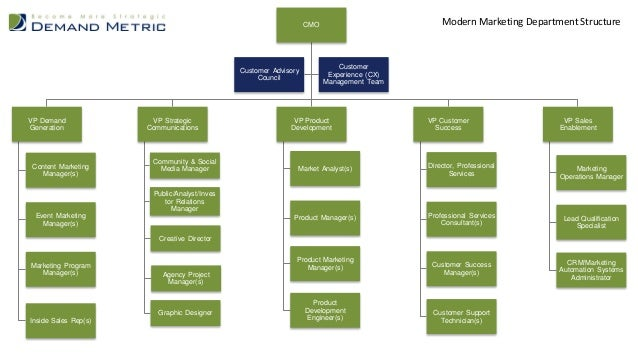 Modern marketing department structure