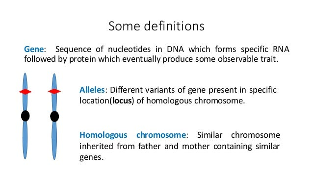 Definition of sex linked genes images 21