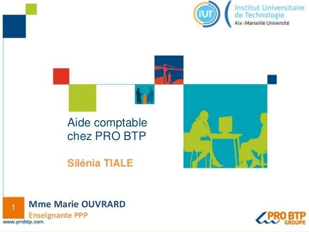 1 Aide comptable chez PRO BTP Silénia TIALE Mme Marie OUVRARD Enseignante PPP