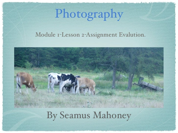 PhotographyModule 1-Lesson 2-Assignment Evalution.    By Seamus Mahoney