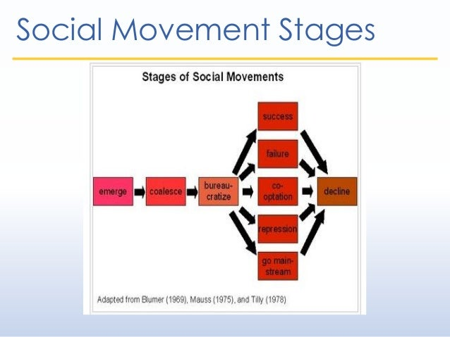 evolution of a social movement essay Free essays from bartleby | what makes a social movement successful: is leadership the deciding factor political science, social science major (class of.