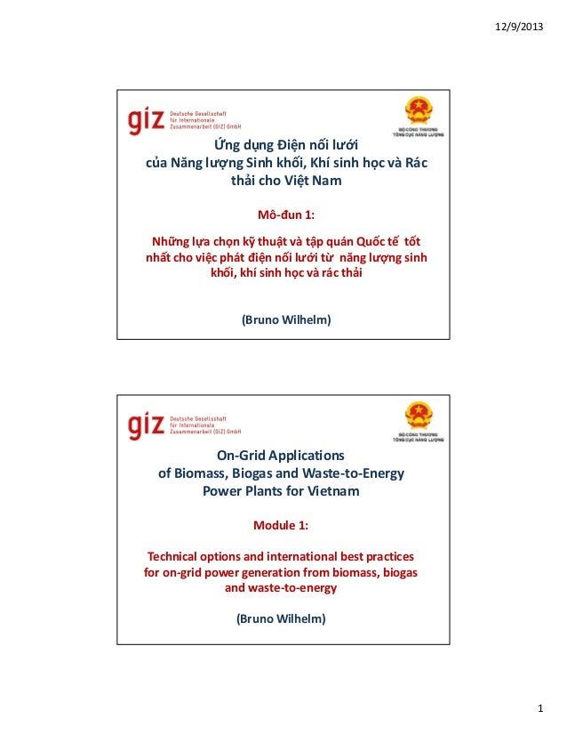 12/9/2013  Ứng dụng Điện nối lưới của Năng lượng Sinh khối, Khí sinh học và Rác thải cho Việt Nam Mô-đun 1: Những lựa chọn...