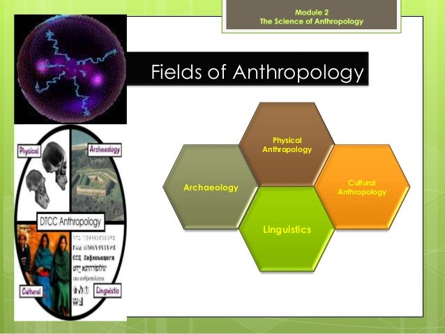 an analysis of the types of anthropology a science of human culture The department of sociology, anthropology and criminal crime analysis (3) forensic science with a focus as a universal category of human culture.