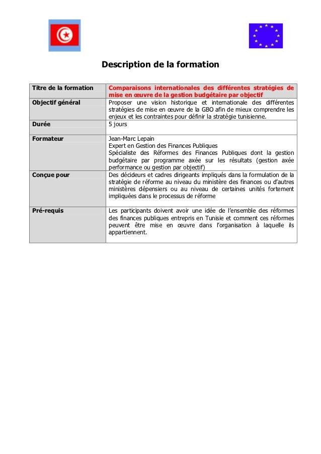 Description de la formationTitre de la formation    Comparaisons internationales des différentes stratégies de            ...