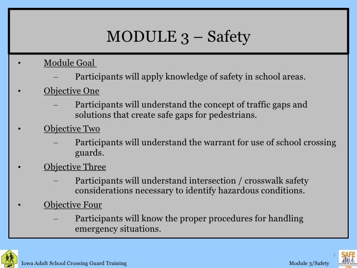 Crossing Guard Training Module 3 Safety