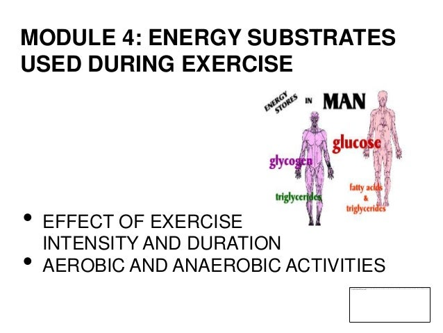 Module 4   mcc sports nutrition credit course - energy substrates used during exercise