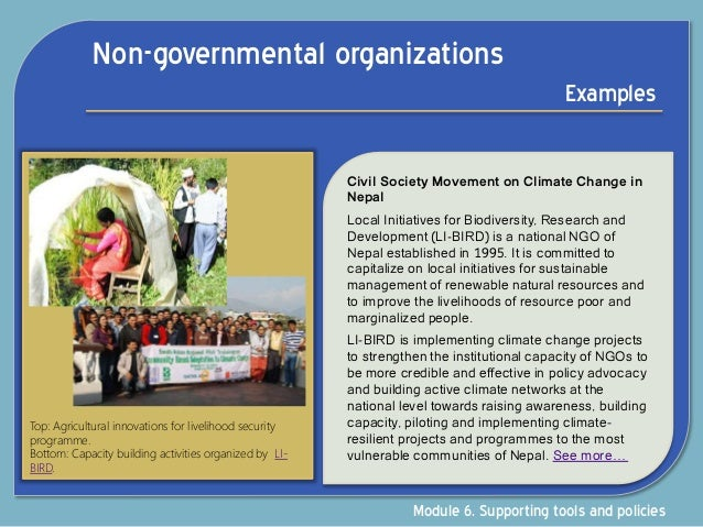 role of government and nongovernment organizations Non-governmental organizations, nongovernmental organizations, or  nongovernment  unlike the track i diplomacy where government officials,  diplomats and  the vital role of ngos and other major groups in sustainable  development.