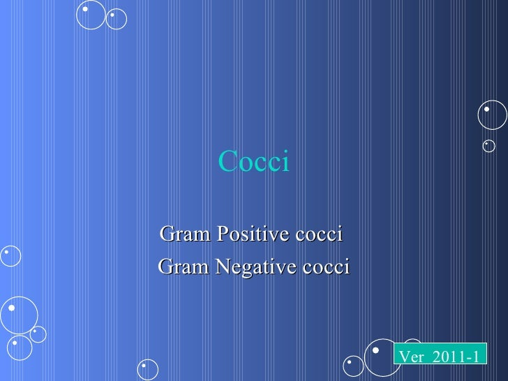 CocciGram Positive cocciGram Negative cocci                      Ver 2011-1