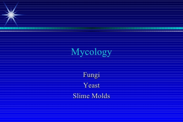Mycology   Fungi   YeastSlime Molds