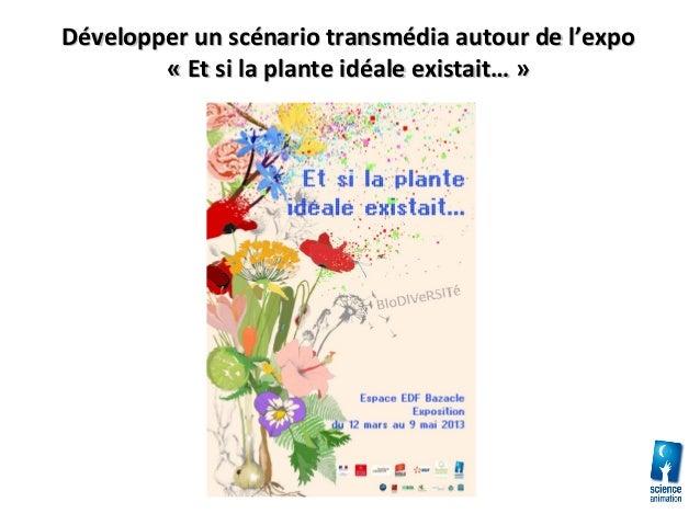 Développer un scénario transmédia autour de l'expoDévelopper un scénario transmédia autour de l'expo« Et si la plante idéa...
