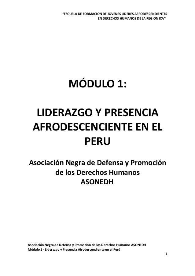 """""""ESCUELA DE FORMACION DE JOVENES LIDERES AFRODESCENDIENTES EN DERECHOS HUMANOS DE LA REGION ICA""""  MÓDULO 1: LIDERAZGO Y PR..."""