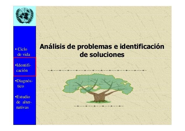 • Ciclo de vida •Identifi- cación •Diagnós- tico •Estudio de alter- nativas Análisis de problemas e identificación de solu...