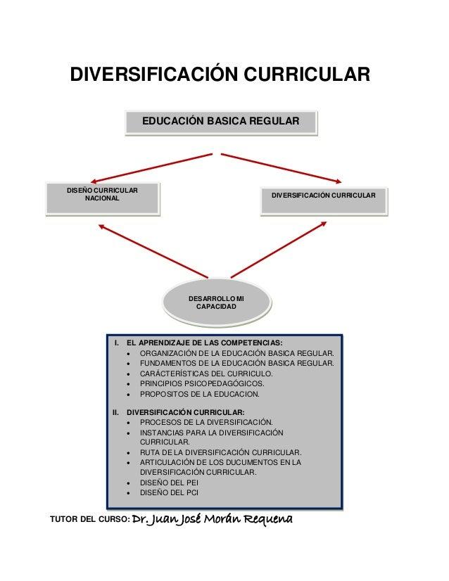 DIVERSIFICACIÓN CURRICULARTUTOR DEL CURSO: Dr. Juan José Morán RequenaDESARROLLO MICAPACIDADDISEÑO CURRICULARNACIONAL DIVE...
