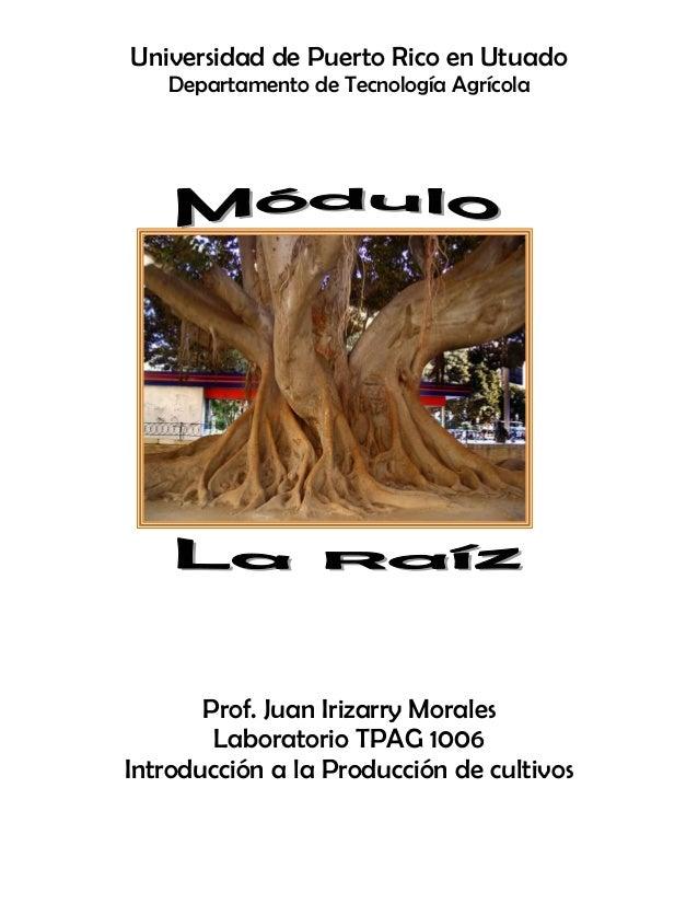 Universidad de Puerto Rico en Utuado Departamento de Tecnología Agrícola Prof. Juan Irizarry Morales Laboratorio TPAG 1006...
