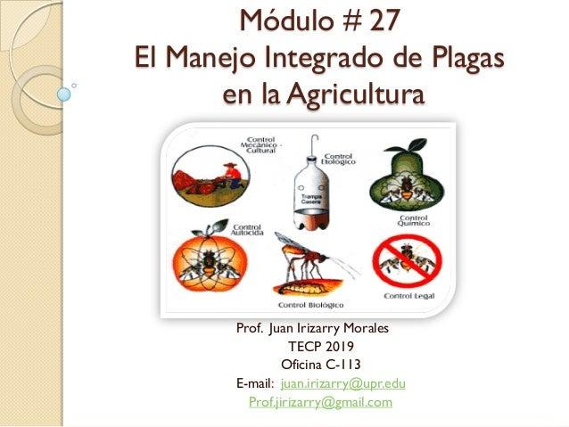 Módulo # 27 El Manejo Integrado de Plagas en la Agricultura Prof. Juan Irizarry Morales TECP 2019 Oficina C-113 E-mail: ju...