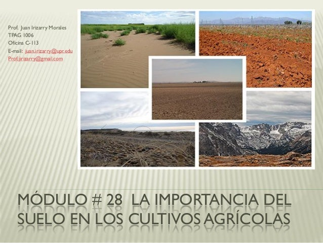 MÓDULO # 28 LA IMPORTANCIA DEL SUELO EN LOS CULTIVOS AGRÍCOLAS Prof. Juan Irizarry Morales TPAG 1006 Oficina C-113 E-mail:...