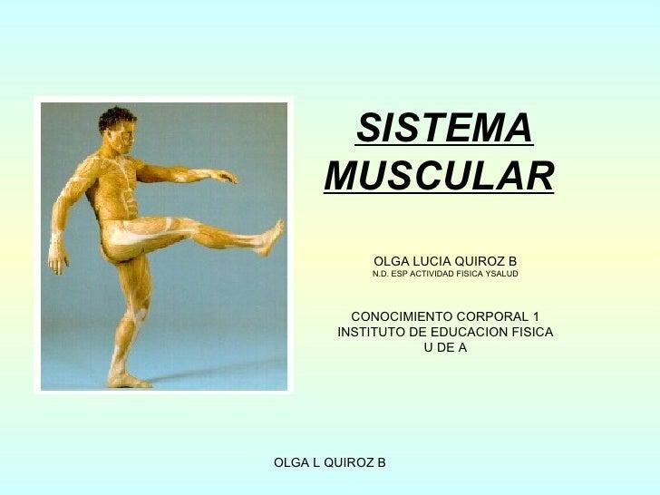 Modulo 4 sistema muscular(1)