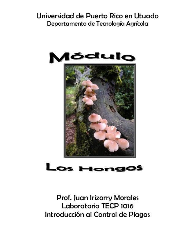 Universidad de Puerto Rico en Utuado Departamento de Tecnología Agrícola Prof. Juan Irizarry Morales Laboratorio TECP 1016...