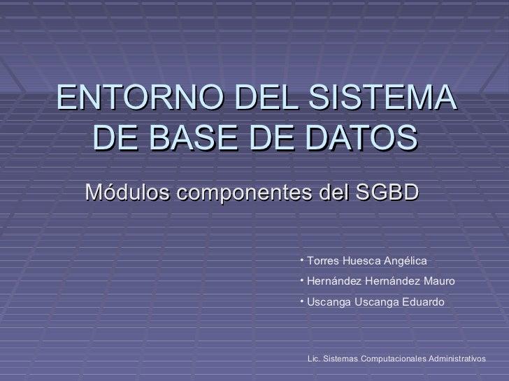 ENTORNO DEL SISTEMA  DE BASE DE DATOS Módulos componentes del SGBD                  • Torres Huesca Angélica              ...