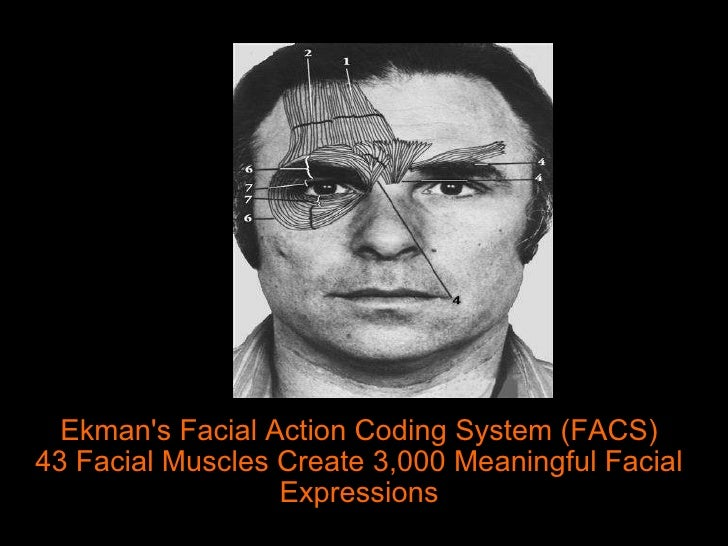 Paul ekman mikroexpressionen facial