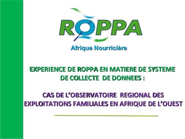 EXPERIENCE DE ROPPA EN MATIERE DE SYSTEMEEXPERIENCE DE ROPPA EN MATIERE DE SYSTEME DE COLLECTE DE DONNEES :DE COLLECTE DE ...