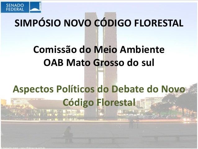 SIMPÓSIO NOVO CÓDIGO FLORESTAL    Comissão do Meio Ambiente      OAB Mato Grosso do sulAspectos Políticos do Debate do Nov...