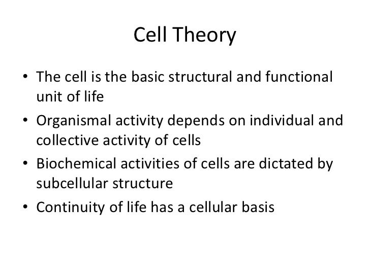 Cell Theory• The cell is the basic structural and functional  unit of life• Organismal activity depends on individual and ...