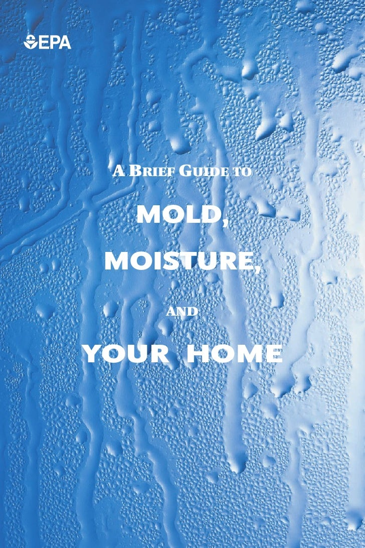 A BRIEF GUIDE TO     MOLD, MOISTURE,        AND   YOUR HOME