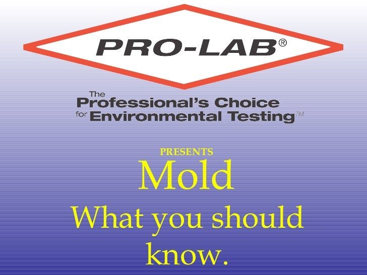 PRESENTS Mold What you should know.