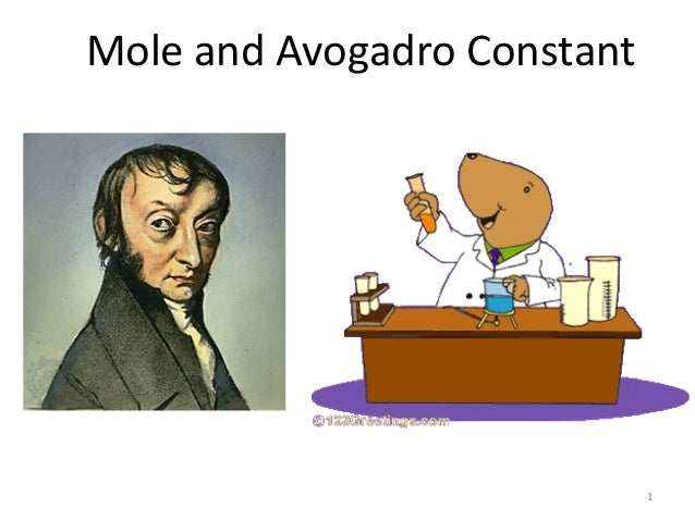 Mole and Avogadro Constant                             1