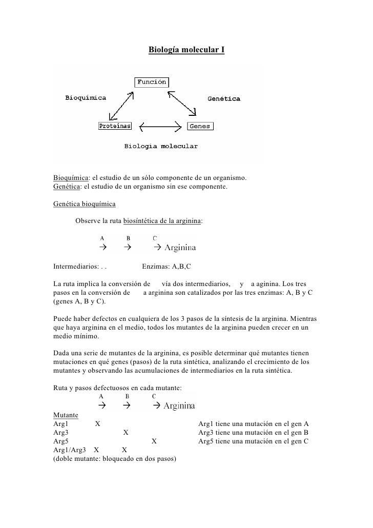 Biología molecular IBioquímica: el estudio de un sólo componente de un organismo.Genética: el estudio de un organismo sin ...