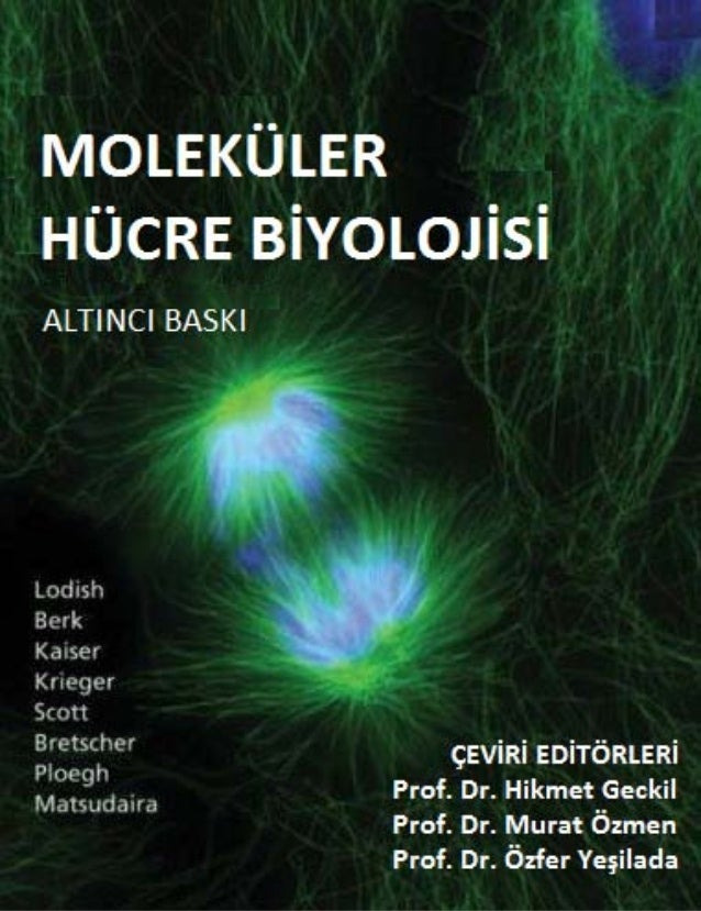 molecular cell biology harvey lodish pdf