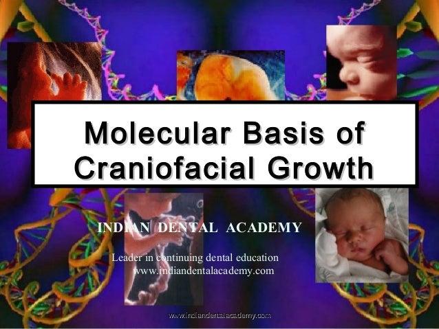 Molecular Basis ofMolecular Basis of Craniofacial GrowthCraniofacial Growth INDIAN DENTAL ACADEMY Leader in continuing den...