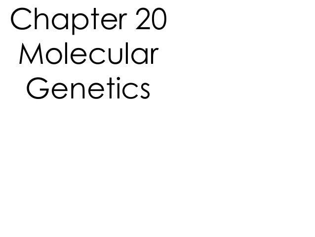 Chapter 20 Molecular Genetics