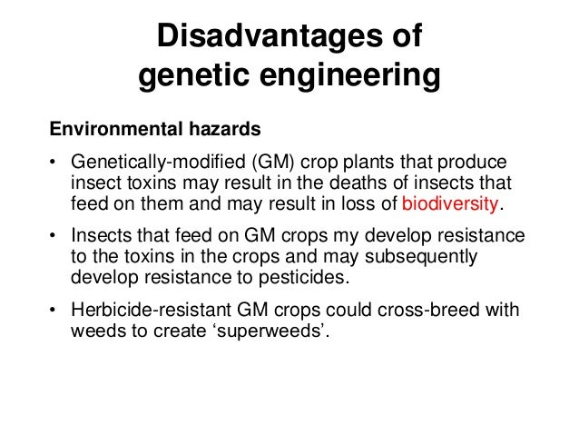 advantages and disadvantages of genetic engineering essay