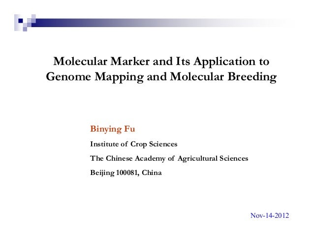 Molecular Marker and Its Application toGenome Mapping and Molecular Breeding       Binying Fu       Institute of Crop Scie...
