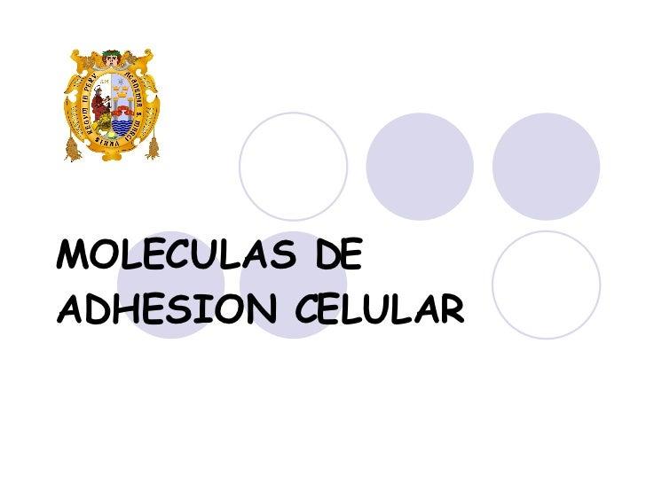 MOLECULAS DE ADHESION CELULAR