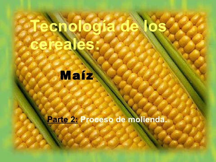 Tecnología de los cereales: <ul><li>Maíz </li></ul><ul><li>Parte 2:   Proceso de molienda. </li></ul>