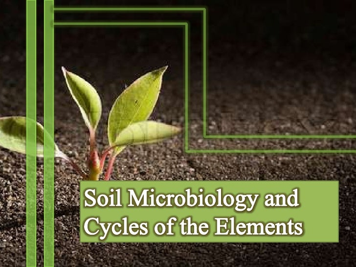 What is Soil Microbiology?Soil Microbiology is the branch of soil      science concerned with soil   inhabiting microorgan...