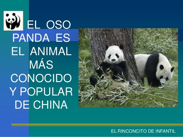 EL OSOPANDA ESEL ANIMAL   MÁSCONOCIDOY POPULAR DE CHINA            EL RINCONCITO DE INFANTIL
