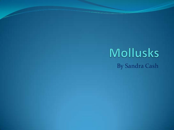 Mollusks<br />By Sandra Cash<br />