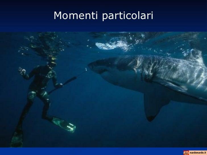 Momenti particolari