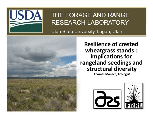 Resilience of crested wheatgrass stands: implications for rangeland seedings and structural diversity by Tom Monaco, ARS Forage and Range Research Lab