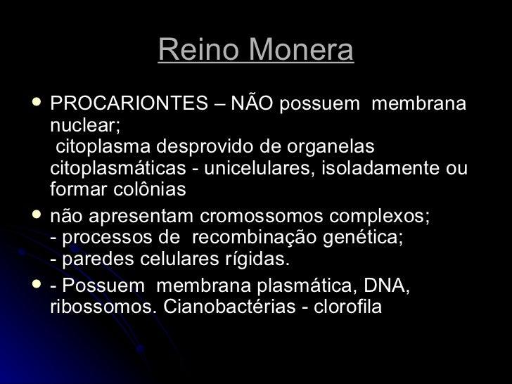 Reino Monera <ul><li>PROCARIONTES – NÃO possuem  membrana nuclear;  citoplasma desprovido de organelas citoplasmáticas - ...