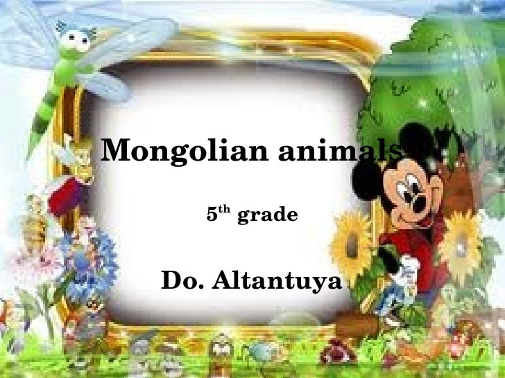 Mongolian animals 2