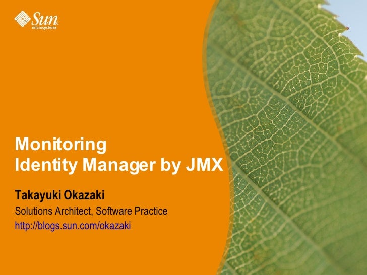 Monitoring Identity Manager by JMX