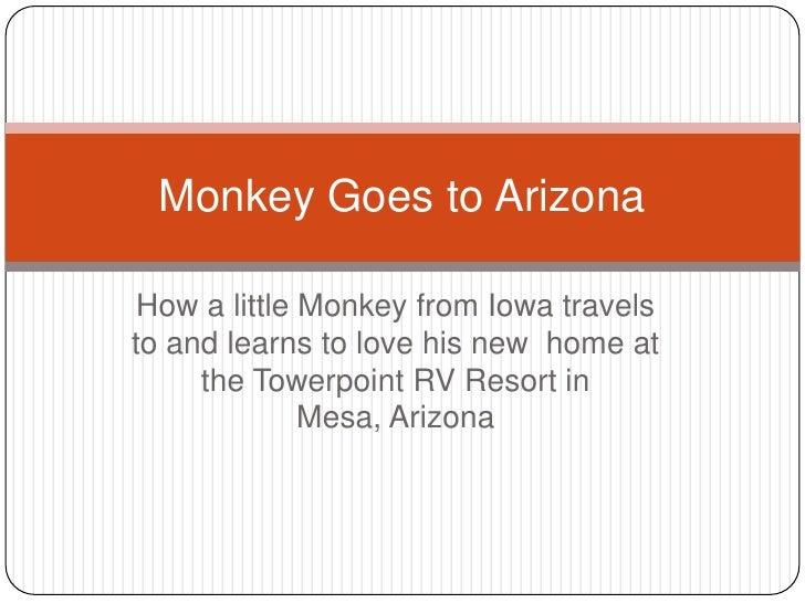 Monkey goes to arizona