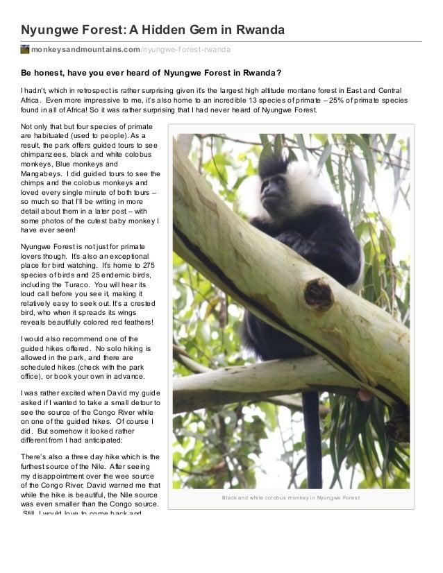 Nyungwe Forest: A Hidden Gem in Rwanda monkeysandmountains.com /nyungwe-f orest-rwanda  Be honest, have you ever heard of ...